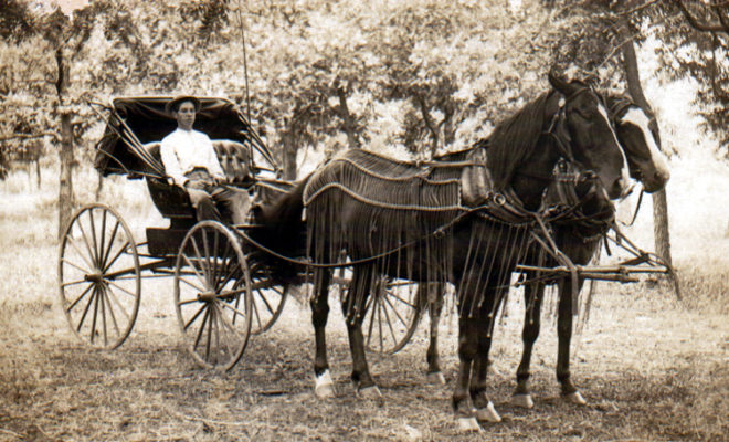 https://en.wikipedia.org/wiki/Horse_and_buggy