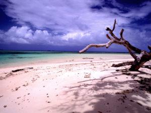 https://en.wikipedia.org/wiki/Laura,_Marshall_Islands