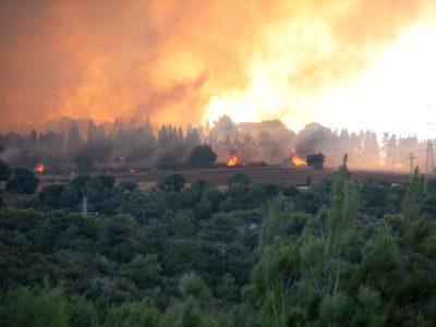 https://commons.wikimedia.org/wiki/File:2010_Carmel_forest_-_fire_near_Isfiya.JPG