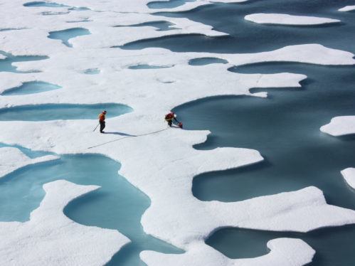 https://en.wikipedia.org/wiki/Sea_ice