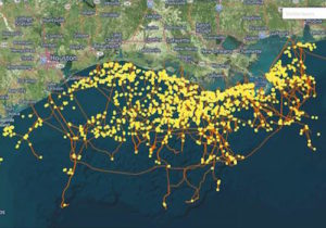 Gulf of Mexico oil and gas platforms and pipelines by SkyTruth/Facebook