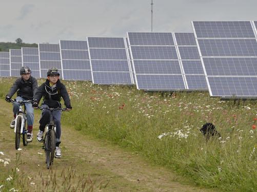 Mr Renewables/Wikipedia