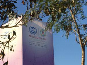 Mitchell Beer/The Energy Mix/COP22 Marrakech