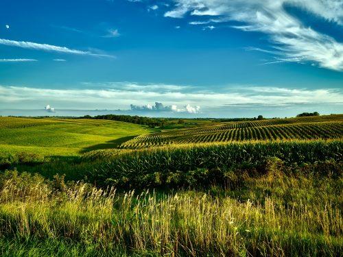 Carbon Farming - The Energy Mix
