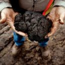 Alberta tar sands oil sands